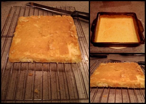 Write_Chestnut Sponge Cake-001