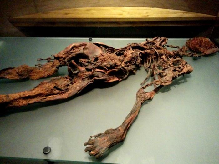 bog people national museum of ireland archaeology